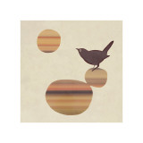 Fly on the Wall Giclee Print by  Ruppel