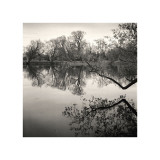 Rideau River, Study, no. 1 Giclee Print by Andrew Ren