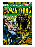 Man-Thing 16 Cover: Man-Thing Kunst von Mayerik Val