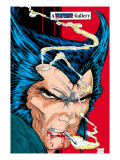 Wolverine 6: Wolverine and Logan Charging Prints by Todd McFarlane