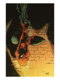 Marvel Adventures Spider-Man 57 Cover: Spider-Man Prints by Skottie Young