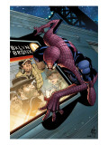 Spider-Man Unlimited No.7 Cover: Spider-Man Prints by Damion Scott