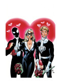 Spider-Man/Human Torch No.4 Cover: the Human Torch Johnny Storm, Spider-Man and Black Cat Prints by Templeton Ty