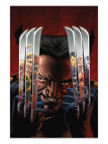 House of M: Masters of Evil 2 Cover: Wolverine Prints by Mike Perkins