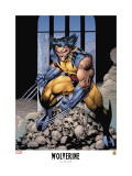 Wolverine Lithograph: Wolverine Print by Lee Jim