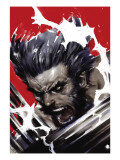Wolverine: Soultaker No.1 Cover: Wolverine Prints