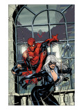 Marvel Knights Spider-Man No.4 Cover: Spider-Man and Black Cat Prints by Terry Dodson