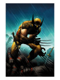 Wolverine No.20 Cover: Wolverine Posters by John Romita Jr.