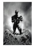 Amazing Spider-Man 527 Cover: Peter Parker Prints by Mike Deodato Jr.