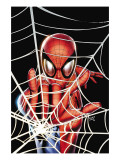 Spider-Man: Brand New Day - Extra!! 1 Cover: Spider-Man Charging Posters by Land Greg