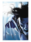 Wolverine 11 Cover: Wolverine Prints by Leandro Fernandez
