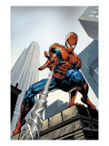 Amazing Spider-Man 520 Cover: Spider-Man Swimming Prints by Mike Deodato