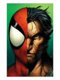 Ultimate Spider-Man 67 Cover: Spider-Man and Wolverine Posters by Mark Bagley