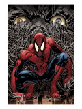 The Amazing Spider-Man 553 Cover: Spider-Man Posters by Phil Jimenez