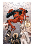 Marvel Knights Spider-Man 6 Cover: Spider-Man Prints by Terry Dodson