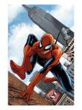 The Amazing Spider-Man 546 Cover: Spider-Man Kunstdrucke von MCNiven Steve