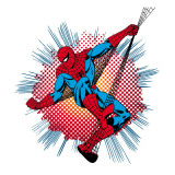 Marvel Comics Retro: Spider-Man Prints