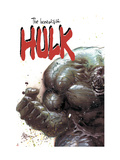 Incredible Hulk 67 Cover: Hulk Fighting Art by Mike Deodato Jr.