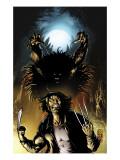 Wolverine No.14 Cover: Wolverine Art by Darick Robertson