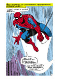 Marvel Comics Retro: The Amazing Spider-Man Comic Panel Print