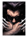 Wolverine 55 Cover: Wolverine Kunstdrucke von Bianchi Simone