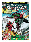 Marvel Comics Retro: The Amazing Spider-Man Comic Book Cover #122, the Green Goblin's Last Stand! Poster