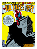 Marvel Comics Retro: The Amazing Spider-Man Comic Panel, the Vulture's Prey Art