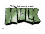 Logo: Hulk Stretched Canvas Print by Mike Deodato