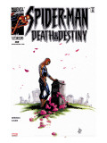Spider-Man: Death & Destiny No.2 Cover: Spider-Man Stretched Canvas Print by Lee Weeks