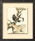Oriental Bird on Branch II Print