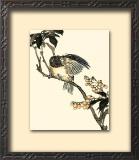 Oriental Bird on Branch V Prints