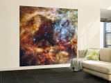 A Stellar Nursery known as R136 in the 30 Doradus Nebula Wall Mural – Large