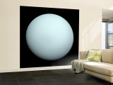 Planet Uranus Wall Mural – Large