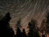 Star Trails over the Trees in Aberdeen, Scotland Photographic Print