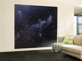 Witch Head Nebula Wall Mural – Large
