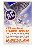 WWII AAF 'You Can Have Silver Wings' Poster Poster
