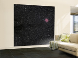 Cocoon Nebula Wall Mural – Large