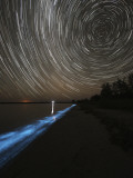 Star Trails over Bioluminescence in Waves on the Shores of the Gippsland Lakes, Australia Photographic Print
