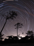 Polar Star Trails Circle around the Pole Star in Fonte-Da-Telha, Portugal Photographic Print