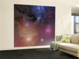 The Starforming Region of Rho Ophiuchus Wall Mural – Large
