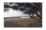 Shaded Beach, Carmel by the Sea, California Photographic Print by George Oze