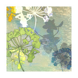 Wildflower Shadows Giclée-Druck von Jan Weiss