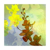 Orchids Inspired Giclee Print by Jan Weiss