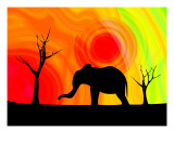 Elephant Silhouette Photographic Print by Chris Harvey