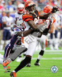 Chad Ochocinco 2010 Action Photo