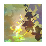 Floral Shadows Giclee Print by Jan Weiss