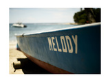 Melody Photographic Print by John Gusky