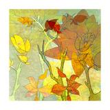 Floral Spice Shadow Giclée-Druck von Jan Weiss