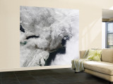 A Severe Winter Storm around the Washington DC Area Wall Mural – Large