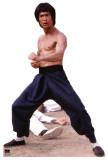 Bruce Lee Cardboard Cutouts